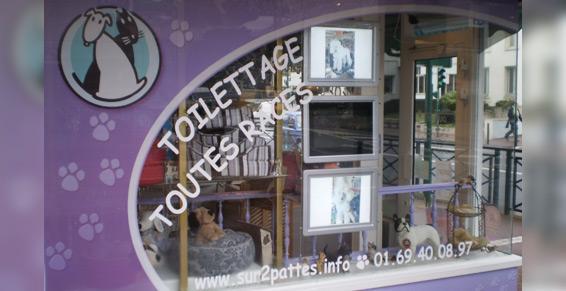 Salon de toilettage Sur 2 pattes : image 1
